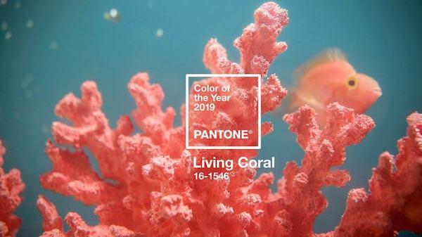 pantone-colour-of-year-2019-living-coral-design_dezeen_hero-852x479-copy